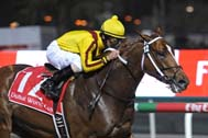 'Awesome' Curlin idles to victory