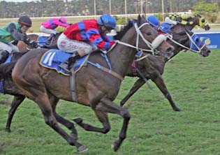 Galahad to race to punters' rescue in R3-million Pick 6