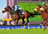 Charity the biggest winner as Likeithot wins Mile