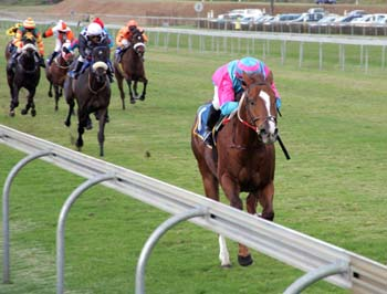 Preview: Time To Dance can waltz in at Scottsville