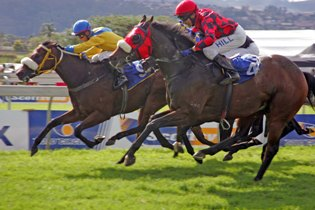 Course and distance favour Mdansi at Scottsville