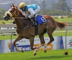 Vaal Turf track could flow with Milk and Honey