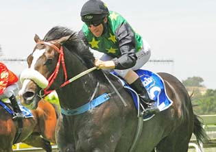 Galileo's Galaxy to reach for the stars in Cape Guineas