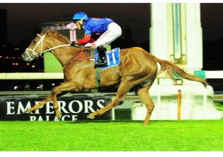 Outsider Fenerbahce pulled out of R2-million Summer Cup