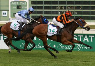 Field Flower, Schlechter all on same `Page' in Guineas