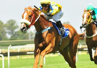 Draws, weights for Guineas Day at Turffontein