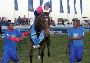 Pocket Power being prepared for his fourth successive Met